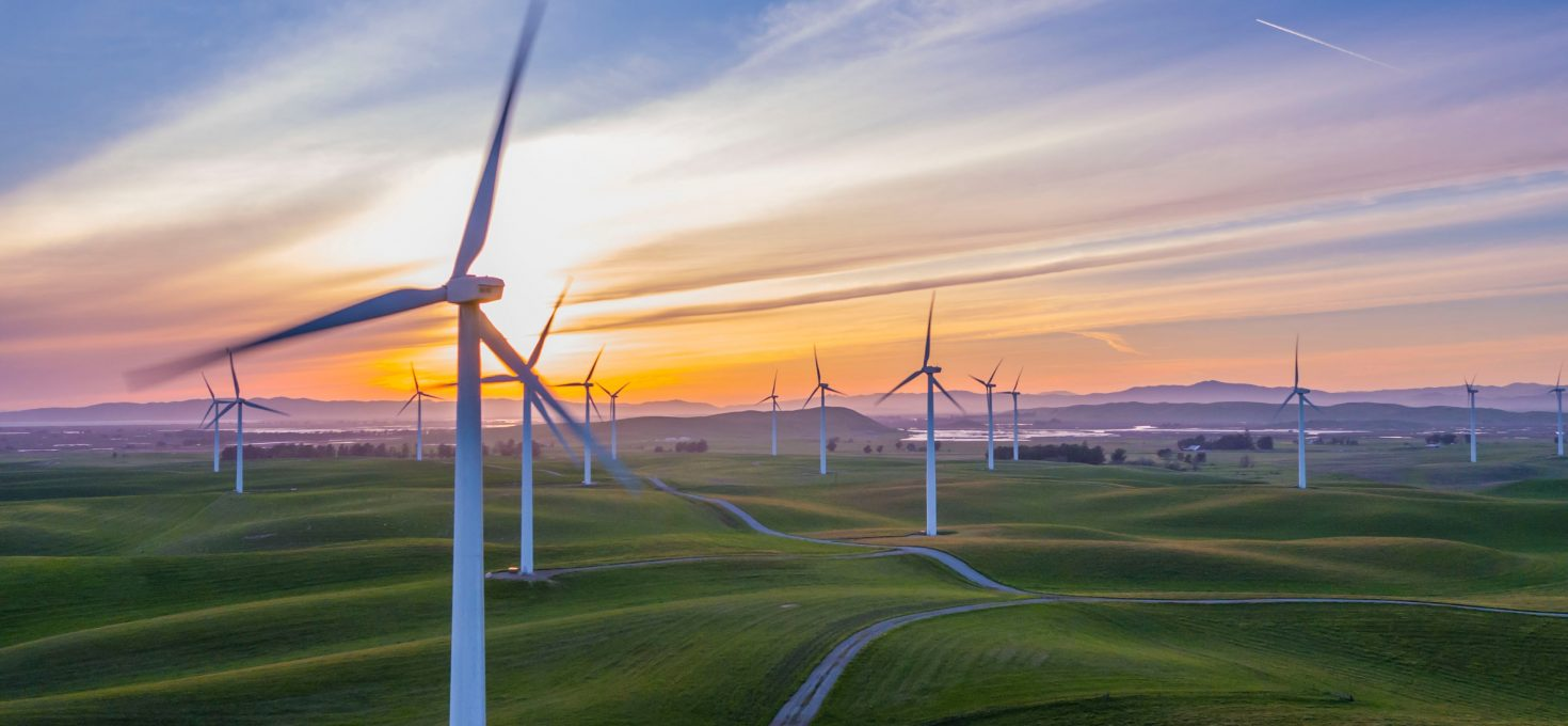 Nachhaltig investieren – So verdienst du grünes Geld
