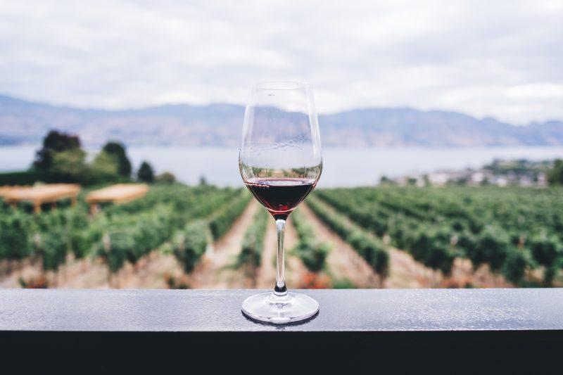 Mit Wein Geld verdienen – Wein als Wertanlage