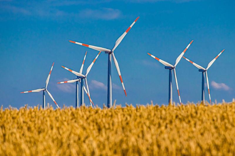 Die beliebtesten nachhaltigen ETFs